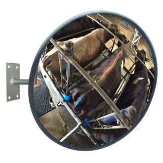 900mm Acrylic Livestock Observation Mirror
