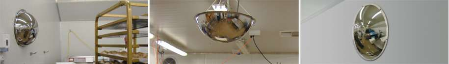 Stainless Steel Food Production Dome Mirrors